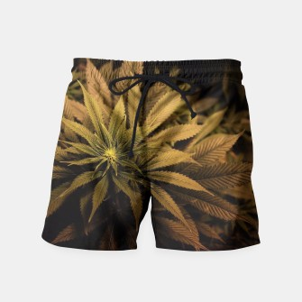 Thumbnail image of brown weed swimming shorts, Live Heroes