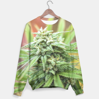 Thumbnail image of MARY JANE SWEATER, Live Heroes