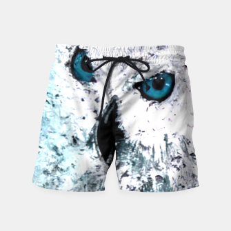 Thumbnail image of white owl blue eyes, Live Heroes