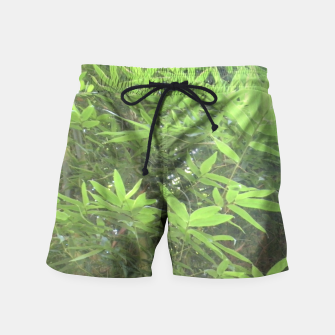 Thumbnail image of Bamboo 0413 Swim Shorts, Live Heroes