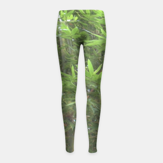 Thumbnail image of Bamboo 0413 Girl's Leggings, Live Heroes