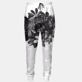 Thumbnail image of No parachutes for plants Sweatpants, Live Heroes