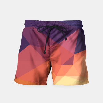 Thumbnail image of Geometric BGs14 Swim Shorts, Live Heroes