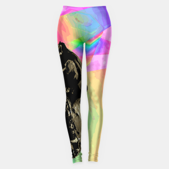 Thumbnail image of rainbow spin Leggings, Live Heroes