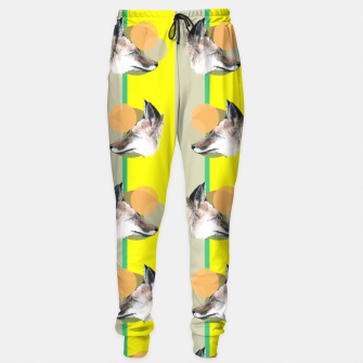 Thumbnail image of Fox does Eighties  Sweatpants, Live Heroes
