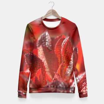 Bearberry Fitted Waist Sweater thumbnail image