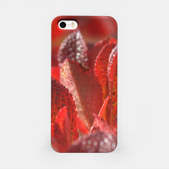 Bearberry iPhone Case thumbnail image
