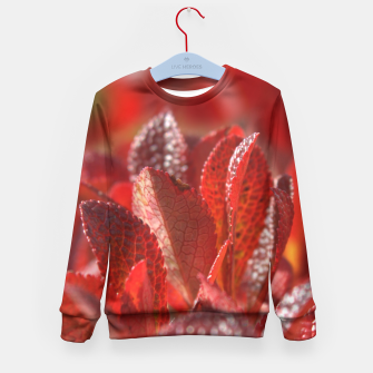 Bearberry Kid's Sweater thumbnail image