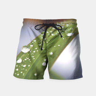 Thumbnail image of DewDrops Swim Shorts, Live Heroes