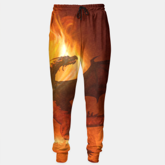 Thumbnail image of Dragon's world Sweatpants, Live Heroes