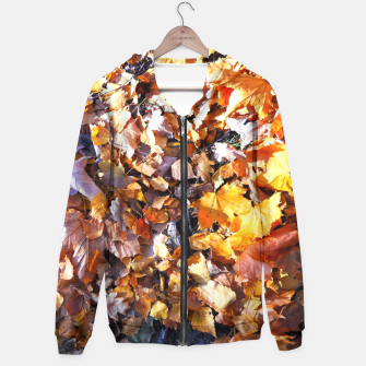 Miniaturka cOLOURS oF aUTUMN Hoodie, Live Heroes