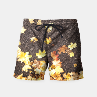 Gold yellow maple leaves autumn asphalt road Swim Shorts thumbnail image
