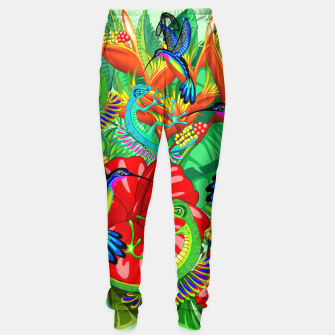 Thumbnail image of The Lizard, The Hummingbird and The Hibiscus Sweatpants, Live Heroes