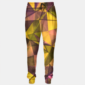 Thumbnail image of geometric pattern Sweatpants, Live Heroes