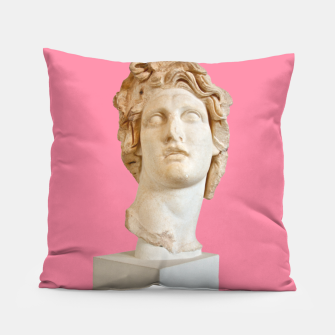 Miniatur Helios (or the Unexpected Virtue of Aesthetics) Pillow, Live Heroes