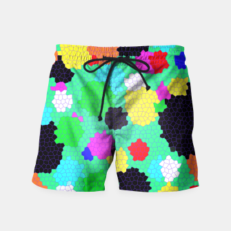 Thumbnail image of Colours  Swim Shorts, Live Heroes