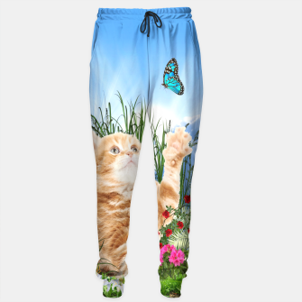 Thumbnail image of Butterfly playing with kitty Sweatpants, Live Heroes