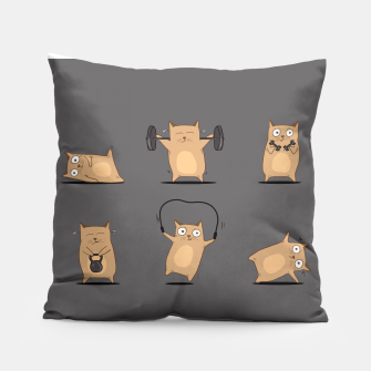 Thumbnail image of FITNESS CAT Pillow, Live Heroes