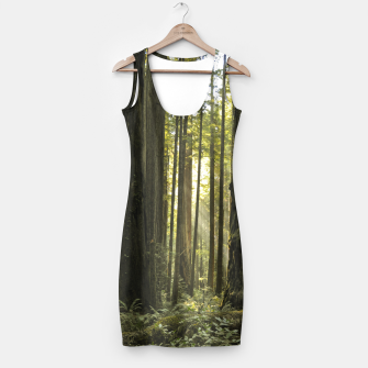Thumbnail image of Into the woods Simple Dress, Live Heroes