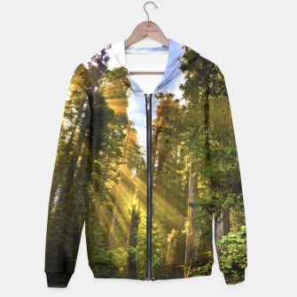Thumbnail image of Magical Redwood Forest Hoodie, Live Heroes