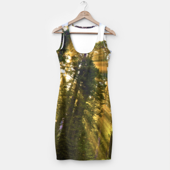 Thumbnail image of Magical Redwood Forest Simple Dress, Live Heroes
