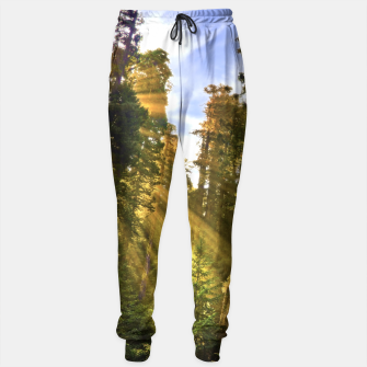 Thumbnail image of Magical Redwood Forest Sweatpants, Live Heroes