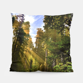 Thumbnail image of Magical Redwood Forest Pillow, Live Heroes