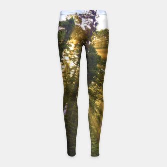 Thumbnail image of Magical Redwood Forest Girl's Leggings, Live Heroes