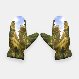 Thumbnail image of Magical Redwood Forest Gloves, Live Heroes