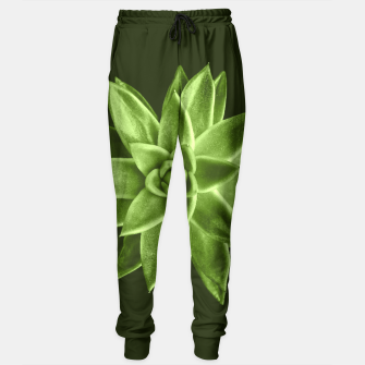 Greenery succulent Echeveria agavoides flower Sweatpants thumbnail image