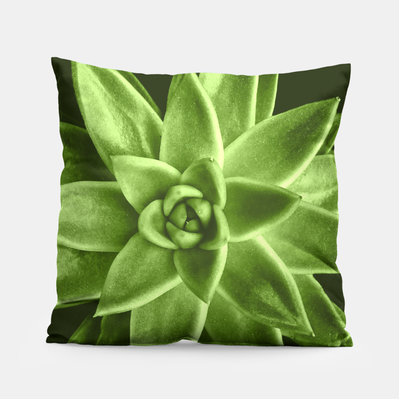 Image of Greenery succulent Echeveria agavoides flower Pillow - Live Heroes