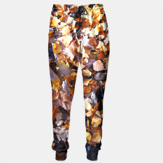 Miniaturka cOLOURS oF aUTUMN Sweatpants, Live Heroes