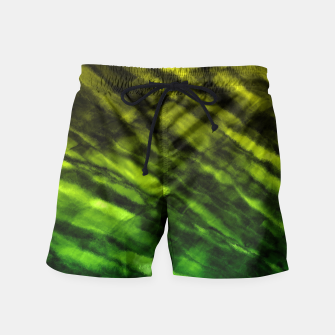 Rock Pool in Green and Gold Swim Shorts thumbnail image
