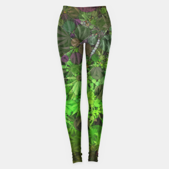 Thumbnail image of Ganja Forest  Leggings, Live Heroes