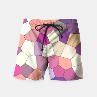 Thumbnail image of Retro COLORS Swim Shorts, Live Heroes