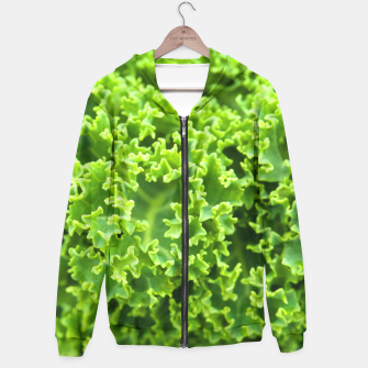 Thumbnail image of Cabbage pattern Hoodie, Live Heroes