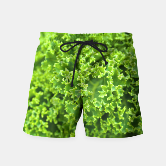 Thumbnail image of Cabbage pattern Swim Shorts, Live Heroes