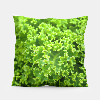 Thumbnail image of Cabbage pattern Pillow, Live Heroes