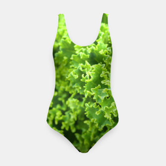 Thumbnail image of Cabbage pattern Swimsuit, Live Heroes