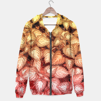 Lovely Leaves, in Red and Gold Hoodie thumbnail image