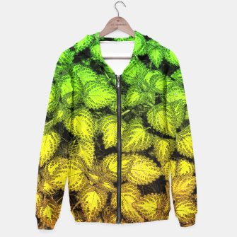 Thumbnail image of Lovely Leaves, in Green and Gold Hoodie, Live Heroes