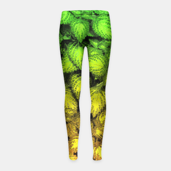 Thumbnail image of Lovely Leaves, in Green and Gold Girl's Leggings, Live Heroes