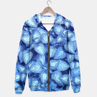 Lovely Leaves, in Blue Hoodie thumbnail image