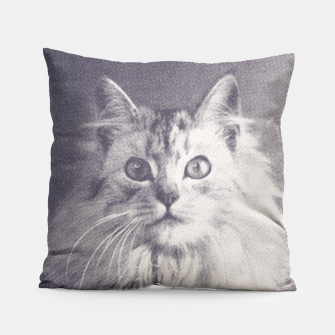 Thumbnail image of Famous Quotes Cat Coussin, Live Heroes