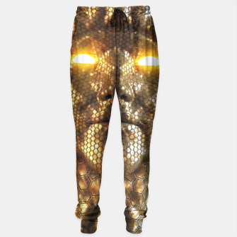 Thumbnail image of Try Sweatpants, Live Heroes