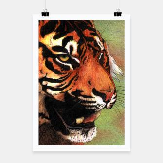 Thumbnail image of Tiger mouth Poster, Live Heroes