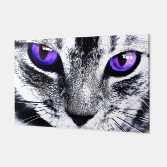Purple eyes cat Canvas obraz miniatury