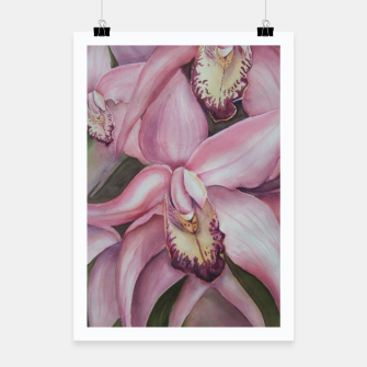 Thumbnail image of EXOTIC PINK ORCHIDS Poster, Live Heroes
