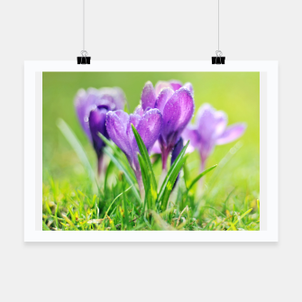 Thumbnail image of Spring Plakat, Live Heroes