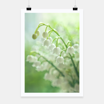 Thumbnail image of Lily of the valley Plakat, Live Heroes